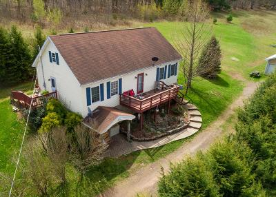 Dushore Single Family Home For Sale: 356 Bear Road