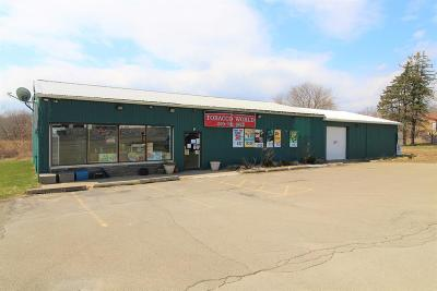 Sayre Commercial For Sale: 24772511 Elmira Street