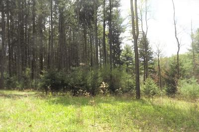 Wyalusing Residential Lots & Land For Sale: * Paradise Rd