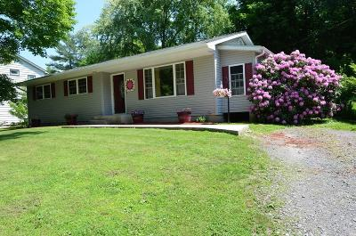 Wyalusing Single Family Home For Sale: 344 Riverside Dr