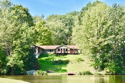 Gillett Single Family Home For Sale: 106 Krise Drive