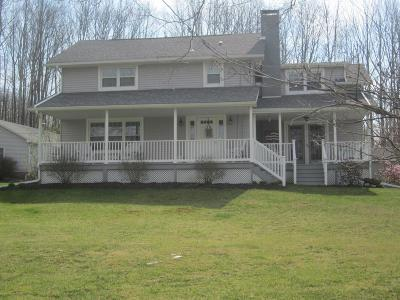Wyalusing Single Family Home For Sale: 628 Dull Rd