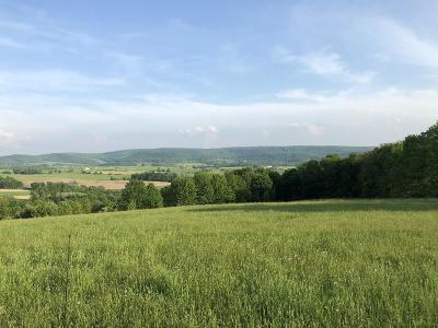 Millerton Residential Lots & Land For Sale: Lot 3 Burrous Hollow Road