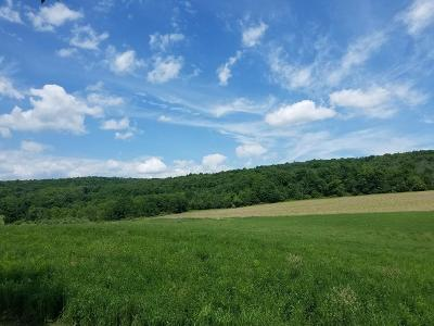 Towanda Residential Lots & Land For Sale: Sheshequin Rd