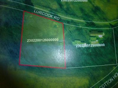 Sayre Residential Lots & Land For Sale: 936 Lurcock Rd