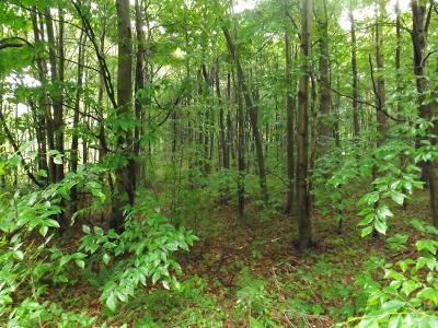 Laporte Residential Lots & Land For Sale: 7 Lot #7 Pioneer Trail