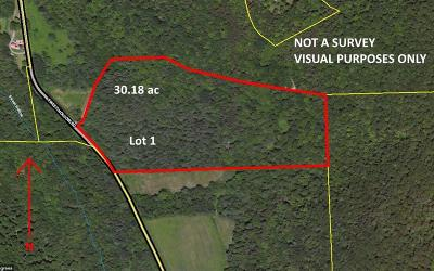 Middlebury Center Residential Lots & Land For Sale: Lot 1 Sweet Hollow Rd