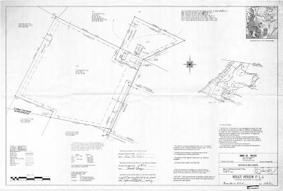 Sayre Residential Lots & Land For Sale: Bensley Street