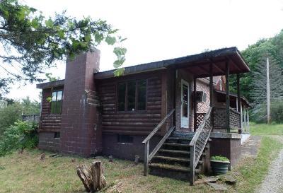 Wysox Single Family Home For Sale: 393 Elliott Road