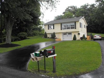 Columbia Cross Roads Single Family Home For Sale: 5659 Austinville Rd