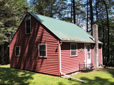 Wyalusing Single Family Home For Sale: 407 Crow Hill Road