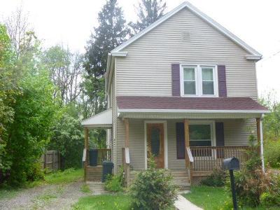 Sayre Single Family Home For Sale: 148 Cayuta