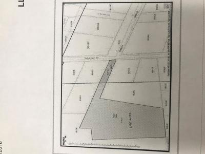 Waverly Residential Lots & Land For Sale: 573 Waverly Street