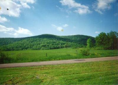 Canton Residential Lots & Land For Sale: Southside Rd