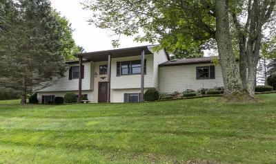 Lawrenceville Single Family Home For Sale: 99 Weaver Street