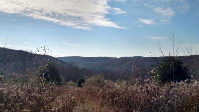 Wyalusing Residential Lots & Land For Sale: Mosier Road