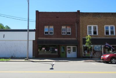 Waverly Commercial For Sale: 376 Broad Street