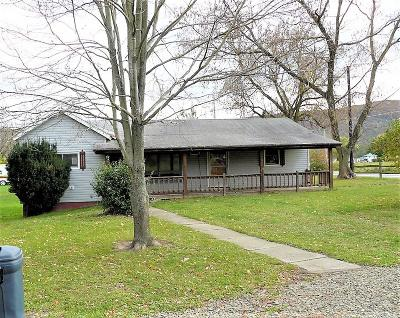 Tioga Single Family Home For Sale: 16049 Route 287
