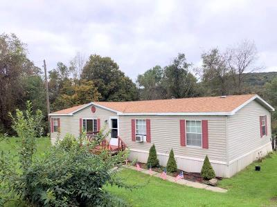 Waverly Single Family Home For Sale: 213 Old State Route 34