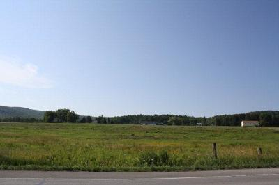 Mansfield Commercial For Sale: Lots 2, 3, & 4 Route 6 & Route 660
