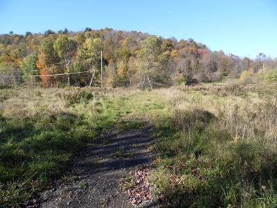 Covington Residential Lots & Land For Sale: 137 Canada Road