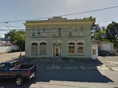 Waverly Commercial For Sale: 446 Broad Street
