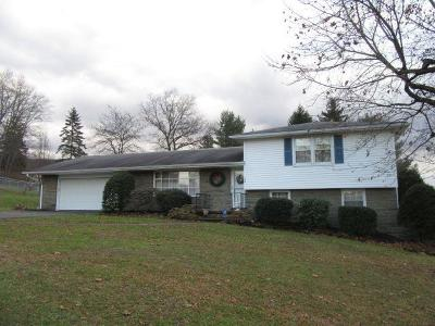 Towanda Single Family Home For Sale: 136 Hillcrest Drive