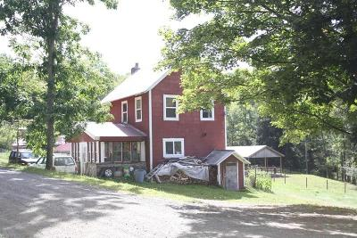 Morris Single Family Home For Sale: 747 Big Run Road