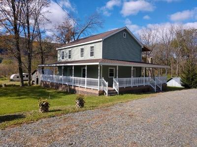 Wyalusing Single Family Home For Sale: 3328 Homets Ferry Rd