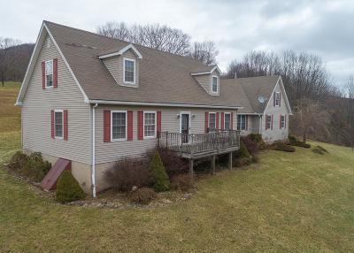 Dushore Single Family Home For Sale: 16187 Route 87