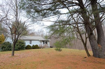 Monroeton Single Family Home For Sale: 18627 Route 414