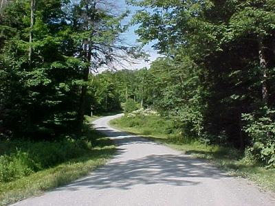 Covington Residential Lots & Land For Sale: Lot 24 Hollow Lane