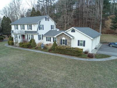 Sayre PA Single Family Home For Sale: $385,000