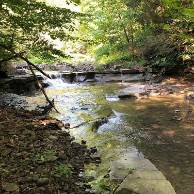 Gillett Residential Lots & Land For Sale: Bucks Creek Road