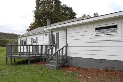 Troy Single Family Home For Sale: 176 Wiegester