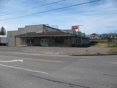 Towanda Commercial For Sale: 935 Craftmaster Road