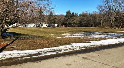 Tioga Residential Lots & Land For Sale: Summit Street