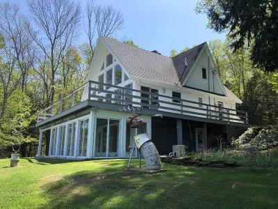 Wellsboro Single Family Home For Sale: 1568 Reese Hill Road