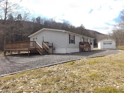Dushore Single Family Home For Sale: 17152 Route 87