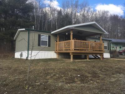 Tioga Single Family Home For Sale: 379 Collum Road