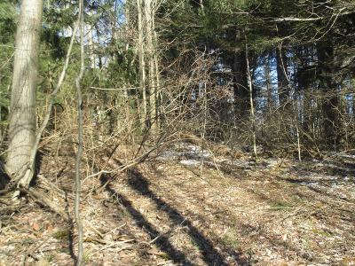 Dushore Residential Lots & Land For Sale: 7 Ambrosious Road