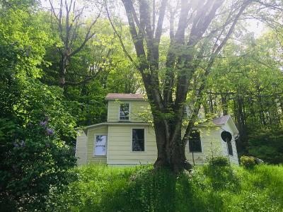 Towanda Single Family Home For Sale: 256 Canal St