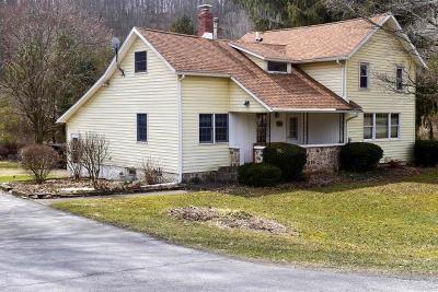 Wellsboro Single Family Home For Sale: 366 Mills Hill Road
