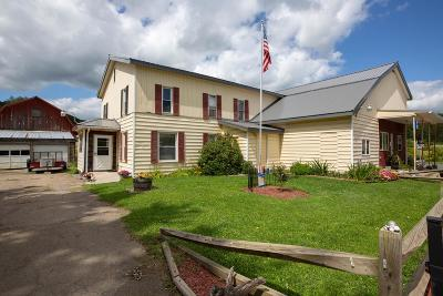 Genesee Single Family Home For Sale: 2760 State Route 49 W, Genesee