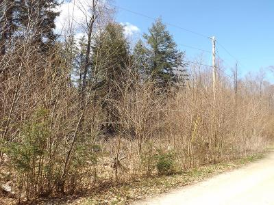 Dushore Residential Lots & Land For Sale: Lot 21 Rocky Road Lane