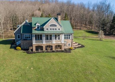 Dushore Single Family Home For Sale: 8535 Pa-87 Highway