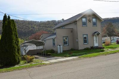 Towanda Single Family Home For Sale: 101 Packer Ave