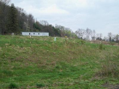 Wyalusing Residential Lots & Land For Sale: Herrickville
