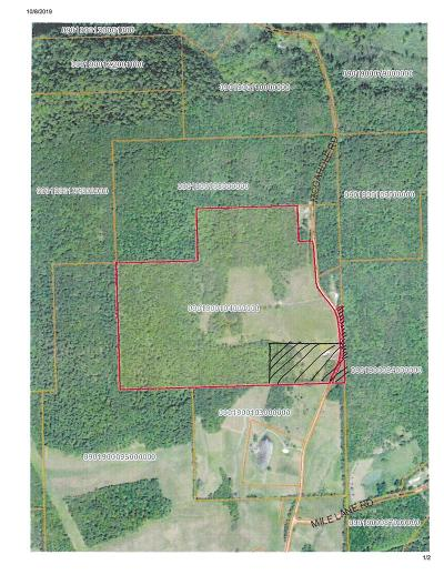 Sayre Residential Lots & Land For Sale: 411 McCardle Road