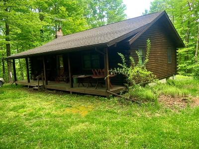 Coudersport, Galeton, Gaines, Wellsboro, Mansfield, Mainesburg, Troy, Sayre, Lawrenceville, Elkland, Knoxville, Westfield, Genesee, Liberty, Williamsport Single Family Home For Sale: 506 Scott Road